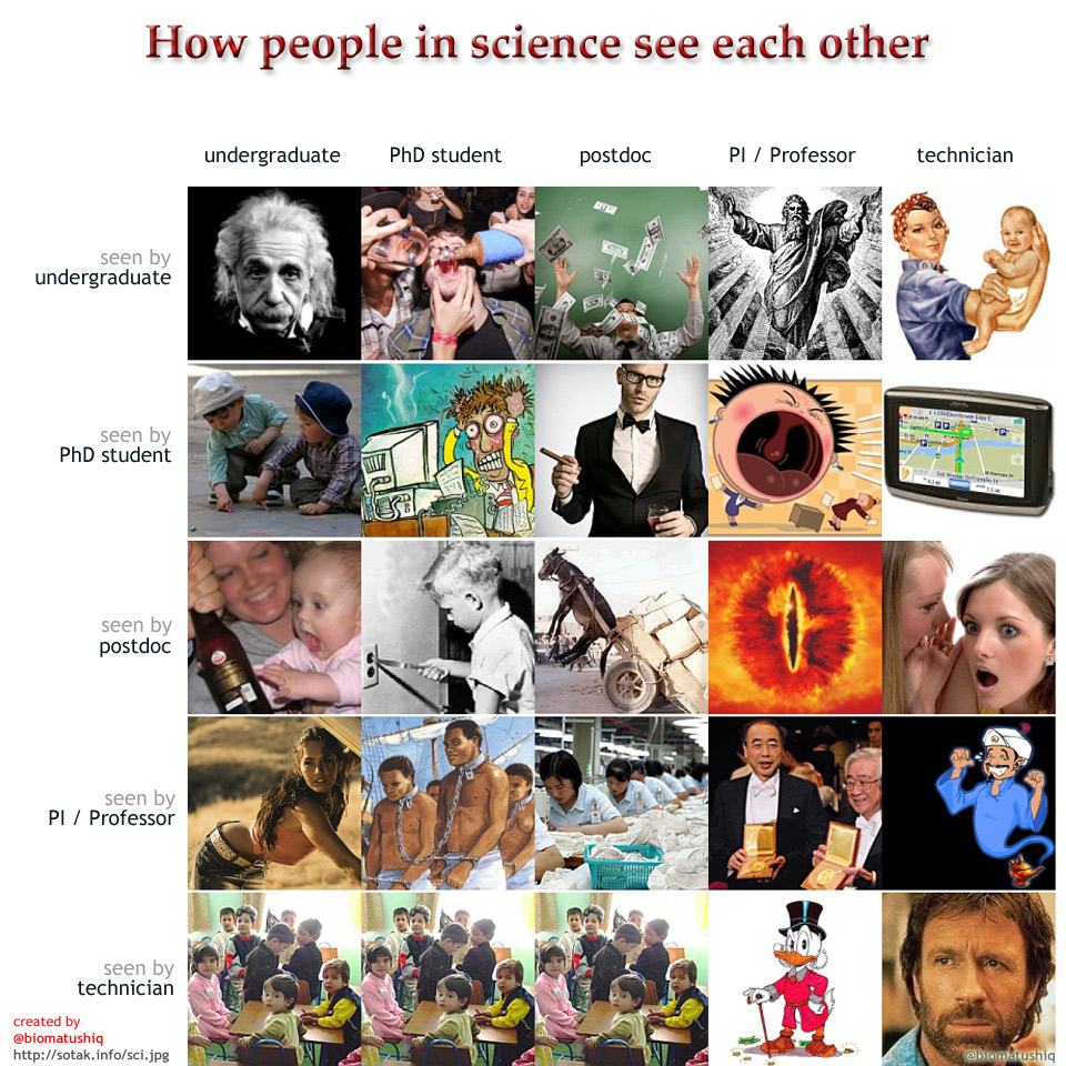 How people in science see each other, Matus Sotak